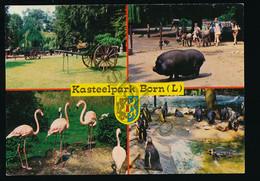 Born - Kasteelpark - ZOO [Z17-0.299 - Zonder Classificatie