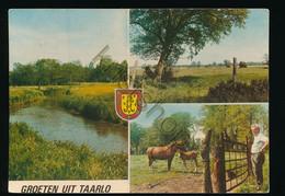 Taarlo [Z19-0.386 - Unclassified
