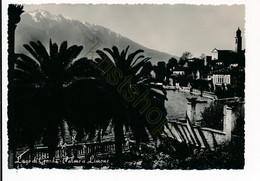 Lago Di Garda - Palme A Limone [Z17-0.938 - Ohne Zuordnung