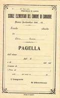 ** PAGELLA SCOLASTICA,,  CAMAIORE.- (LU).- NUOVA.-** - Diplomi E Pagelle