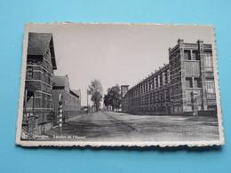 LEUPEGEM Lainière De L'Escaut / De Wollefabriek ( Bestuursdrukkerij Vandevelde & Zoon ) Anno 19?? ( Zie Foto's ) ! - Oudenaarde