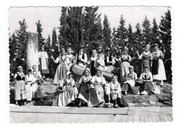 Vedene La Reneissenço De Vedene,groupe Folklorique ,tambourinaires Comtadines - Sonstige Gemeinden