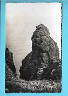 22-----CAP FREHEL--rocher De La Grande Fauconnière--voir 2 Scans - Cap Frehel