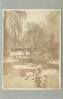 TRIER/TREVES (Allemagne) - Parc En Hiver (photo Année 1924, Format 11,2 Cm X 8,2 Cm) - Luoghi