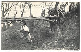 Costumi TICINESI Donne Nei Boschi Wood Collectors 1907 - TI Ticino