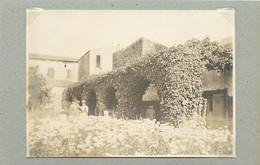 AGDE (Hérault) - Jardin Fleuri (photo Années 30, Format 11,2 Cm X 7,9 Cm) - Lugares