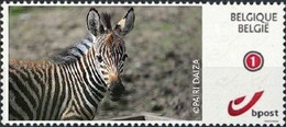 DUOSTAMP** / MYSTAMP** Pairi Daiza - Zèbre / Zebra  - Autocollant / Zelfklevend / Selbstklebend / / Self-adhesive - Persoonlijke Postzegels