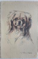 Pékinois - Illustrateur H. VINCENT ANGLADE - Editeur Barré Dayez - - Cani