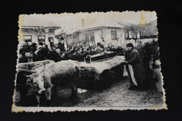 F350 Photo Dead Man Coffin On Ox Cart Romanian Peasants - Fotografía