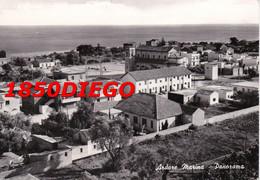 ARDORE MARINA - PANORAMA  F/GRANDE VIAGGIATA 1963 - Reggio Calabria