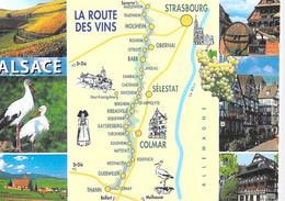 ** Lot De 2 Cartes  ** AGRICULTURE Vignes Vins Vignobles - Carte Géographique Vins D'ALSACE - CPM GF Vine Wine - Vines
