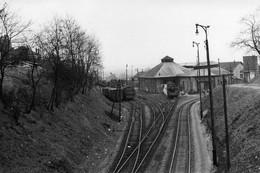 Dépôt De Nogent-Vincennes. Locomotives 131 TB. Photo Jacques Bazin. 02-04-1956 - Eisenbahnen
