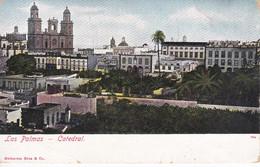 POSTAL DE LAS PALMAS DE LA CATEDRAL (UNION POSTAL) - Gran Canaria