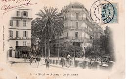 ALGER -  LE PALMIER - Algiers