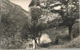 BIASCA (SVIZZERA ) FOTOCARTOLINA  CHIESA DI S.PIETRO - TI Ticino