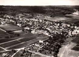 51 / MAILLY CHAMPAGNE /  / VUE PANORAMIQUE / LA LOCALITE ET LES VIGNES / 1966 - Other Municipalities