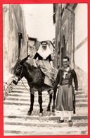 SPAIN MALLORCA   ESCENA TIPICA    MULE AND PWOPLW IN  TRADITIONAL DRESS   RP Pu 1957 - Donkeys