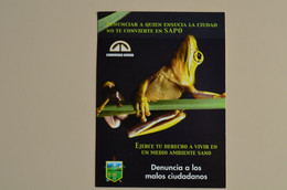 Ecuador CP Special De Dénonciation Ne Te Converti Pas En Crapaud Grenouille  Timbrées Chapeau De Paille Equateur - Fish & Shellfish