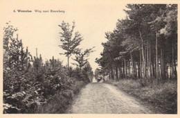 Westerloo-Weg Naar Blauwberg. - Westerlo