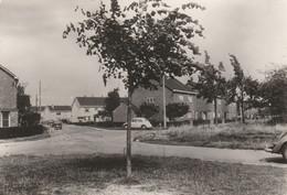 Hermalle Sous Argenteau , La Nouvelle Cité ,( Auto VW Volkswagen Coccinelle , Daf ) - Visé