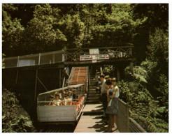 (Z 14) Australia - NSW - UNESCO - Katoomba World Speepest Railway (W3) - Otros