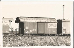 Photo - Thème Chemin De Fer - Wagon  - Fert Genève  - à Gevrey En 1963 - Treinen