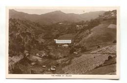 St Helena - The Ridges, Hills, Houses - Old Real Photo Postcard - Saint Helena Island