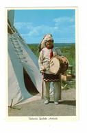 LANSE, Michigan, USA, Sioux Indian In Full Regalia, Old Chrome Postcard - Amerika