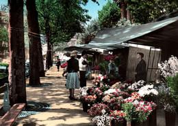 75  PARIS / MARCHE AUX FLEURS 1950 - Ambachten In Parijs