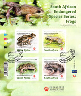 South Africa - 2020 Endangered Frogs Sheetlet (o) - Ranas