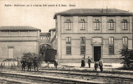 78656- Budrio Stabilimento Per La Selezione Delle Sementi Di A.Bindo Rimini Italien - Bologna