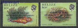 Belize 1984 Mi 745-746 MNH ( ZS1 BLZ745-746 ) - Schelpen