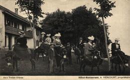 Hte Savoie Saléve Aux Treize Arbres Hotel Restaurant Hercourt ANES ANE DONKEY EZEL ESEL MULES Donkeycollection - Autres Communes
