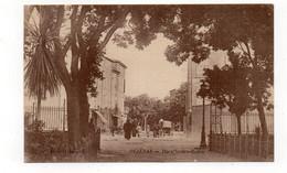 34 - PÉZENAS - Place Ledru-Rollin - Animée  (A184) - Pezenas