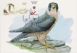 """Maximumkaart """"Slechtvalk"""" Met MyStamp En Speciale Afstempeling - 1985-.. Birds (Buzin)"""
