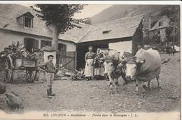 LUCHON - Montauban - Ferme Dans La Montagne - Luchon