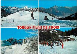CPA Torgon Plan De Croix - VS Valais