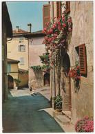 CH 6981 Neggio (Malcantone) - 1984  - (CH) - TI Ticino