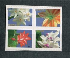 USA Scott #  4862 - 4865   2014  49 C  Winter Flowers  (4865a)              Mint NH  (MNH) - Nuevos