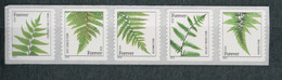 USA Scott #  44848 - 4852    2014  49 C  Ferns (4852a)              Mint NH  (MNH) - Nuevos