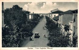 78661- CECINA ( LIVOURNE ) Viale Gulielmo Marconi Italien - Livorno