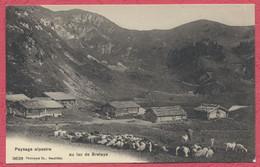 Paysage Alpestre Au Lac De Bretaye -  Villars : Troupeau De Moutons - Chèvres - Le Berger Et Ses Chiens - VD Vaud