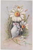 """Cpa Illustrateur Hincore """"souris """" - Non Classificati"""
