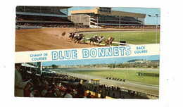 MONTREAL, Quebec, Canada, Split-View Of Blue Bonnets Race Course, 1968 Chrome Postcard - Montreal
