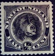 Canada Terre Neuve Newfoundland 1890 Animal Chien Dog Yvert 44 (*) MNG - 1865-1902