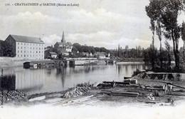 49   CHATEAUNEUF SUR SARTHE DEPOT DE GRUMES AU BORD DU FLEUVE - Chateauneuf Sur Sarthe
