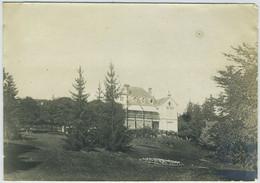 Meximieux-Pérouges (Ain). Les Clématites. 1895. - Antiche (ante 1900)