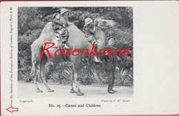 Camel And Children Regent's Park Zoo Zoological Society Of London England 00-10s Dierentuin Jardin Zoologique Tiergarten - Otros