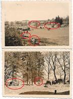 Photo Foto 2WK WW2 WWII Renglez Gouvy Rettigny Cherain Wehrmacht Convoi Chevaux 15.05 - Krieg, Militär