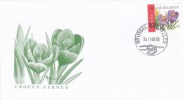 Enveloppe FDC 3142 Fleurs Crocus Vernus André Buzin - 2001-10